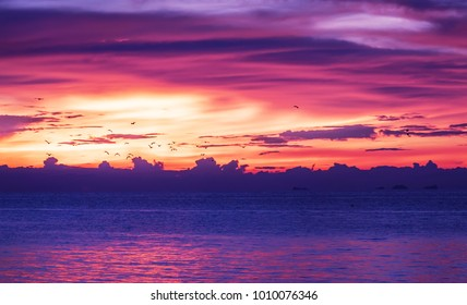 Colorfull  tropical  sunset on the sea with flighting birds and cloudly sky Thailand Koh Phangan