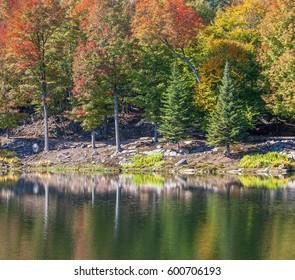 Colors of Autumn Quebec, Canada
