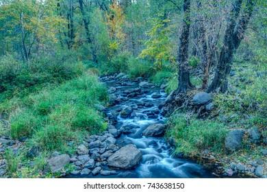 Colors of Autumn in Sedona Arizona