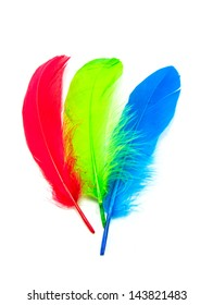 colors chicken feather