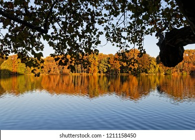 Colors of Fall on the trees of Parc de la Tete d Or in Lyon
