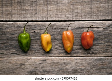 Colors of Habanero Pepper