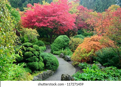 colors of japanese maples in national historical site Butchart Gardens, Vancouver island, British Columbia, Canada