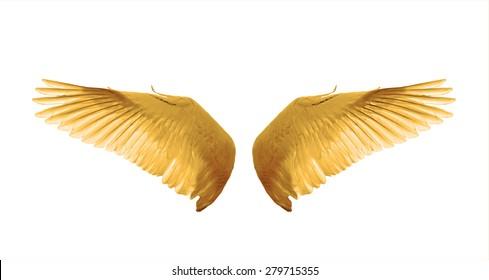 colors wings swan  fantasy