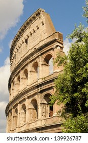The Colosseum of ancient Rome with olive tree in foreground on a sunny day in Rome, Italy