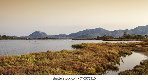 Colostrai pond, Muravera, Sardinia, Italy