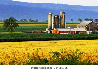 A colour image of a farm in Big Valley, just outside of Belleville, Pa.