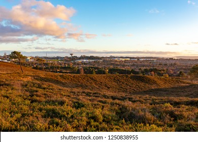 Colour landscape photograph taken on Canford heath nature reserve with lowland heathland in foreground and housing and industrial estate in background, shot during sunset.