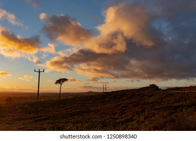 Colour landscape photograph taken on Canford heath nature reserve looking over the heathland with vibrant sky during the golden hour.