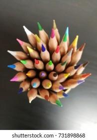 colour penile  - Shutterstock ID 731898868
