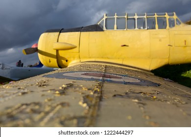 Colour photograph of the harvard 11B propeller fighter plane focused on RAF roundel shot with narrow depth of field.