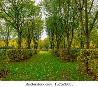 Colourful autumn in British park - London, United Kingdom