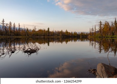 Colourful autumn forest by a quiet lake with reflections of the sky and clouds. September 8, 2018, Norilsk Talnakh