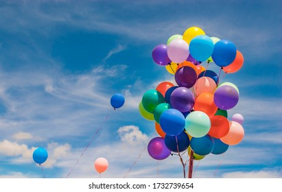 Colourful balloons outside on a sunny day - Shutterstock ID 1732739654