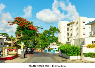 Colourful beachfront street with resorts in Barbados in the Carribean