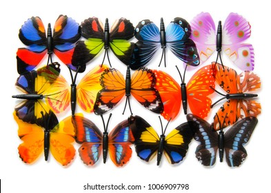 Colourful butterflies on white background