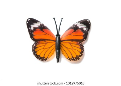 Colourful butterfly isolated on white background