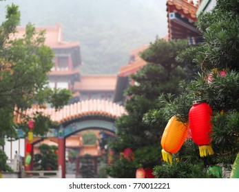 colourful cylinder form semi transparent paper lamp lantern chinese style hanging on pine tree in a historical temple in CHINA selective focus unidentify tourists visitors blur in background