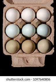 Colourful eggs in gradient natural tones still image. Full frame opaque square cover background