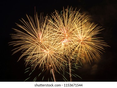 Colourful fireworks light up the night.