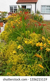 Colourful flower border of a cottage garden with daylilies, heleniums, crocosmia and echinacea