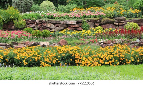 Colourful Flowerbed with Green Grass in a Beautiful Garden