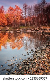 Colourful forest park in autumn. Helsingborg, Sweden.