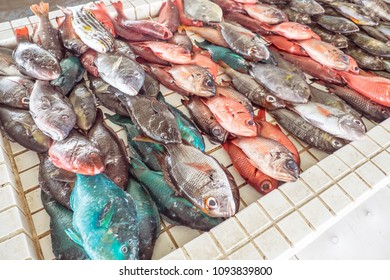 Colourful fresh fish for sale at Apia Seafood Market in Samoa, South Pacific - orange, blue and silver colours
