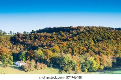 Colourful landscape in autumn season.