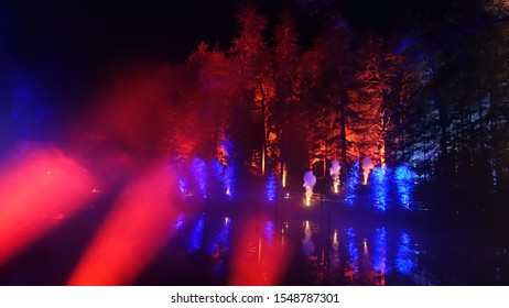 Colourful lights in a forest with abstract lights