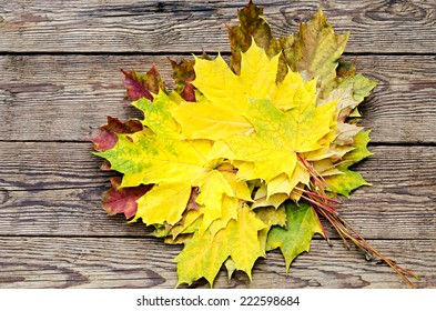 colourful maple leaves on a timber floor