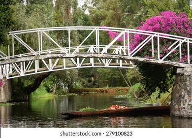 Colourful Mexico  Xochimilco's Floating Gardens in Mexico City.