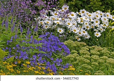 Perennial Border Images Stock Photos Vectors Shutterstock