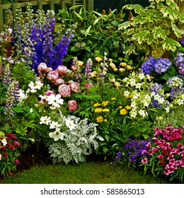 Colourful Mixed flower Border in a cottage garden