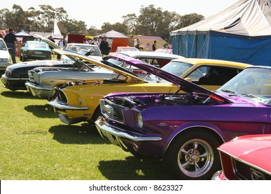 Colourful muscle cars with bonnets open in a row
