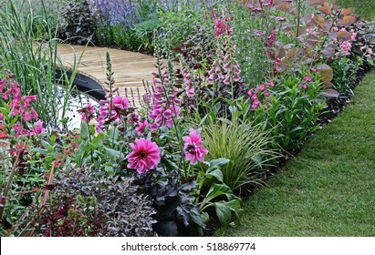 A colourful pink flower border with Foxgloves and Dahlia around a pond