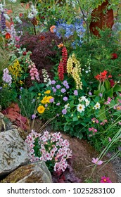 A colourful rockery and flower garden with mixed planting and plant associations