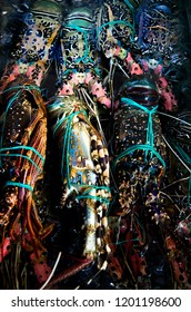 Colourful spiny lobsters tied up on a market in Indonesia.