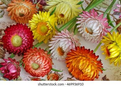 Colourful Straw Flowers Arrangement