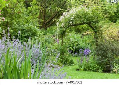 Cottage Garden Flowers Images Stock Photos Vectors Shutterstock
