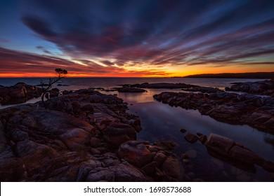 Colourful sunrise over Lone Tree,Binalong Bay,Bay of Fires,North Eastern Tasmania, Australia.