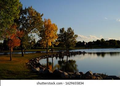 Colourful trees at a lake in Nicolas Sheran Park, Lethbridge, Alberta, Canada during a fall evening