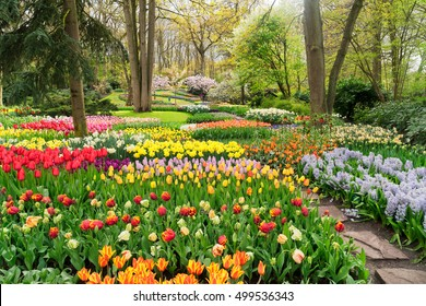 Colourful Tulips Flowerbeds and Path in an Spring Formal Garden