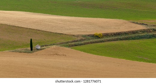 colourfull farming fields in spain with trees in summer
