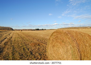 colourfull Harvested Rolls of Straw with deep blue sky as background