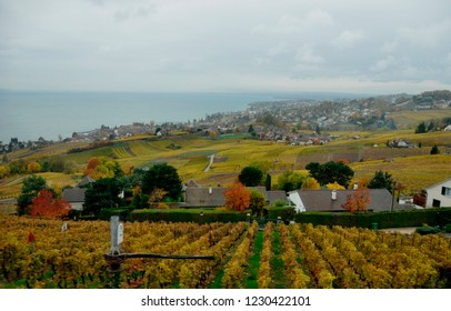 Colourfull World Heritage Lavaux in automne where the wine-yards are located above Lake Geneva on the hills