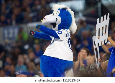 Colts Mascot - Indianapolis Colts host Oakland Raiders on Sept. 29th 2019 at Lucas Oil Stadium in Indianapolis, IN. - USA