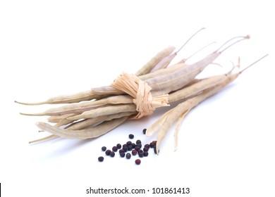 Colza seed