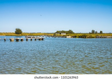 The Comacchio valleys are known worldwide for eel fishing - UNESCO protected area (Ferrara city - Emilia Romagna - Italy)