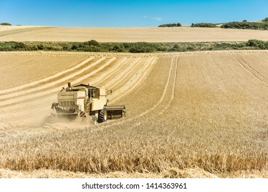 combine harvester in action in the fields